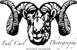 Full Curl Photography Logo